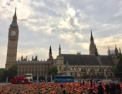 Migrant Voice - UK's missed opportunity at UN summit