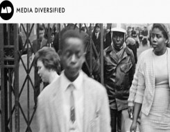Migrant Voice - Comment on Media Diversified