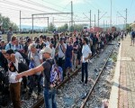 Migrant Voice - Meeting on the plight of people on the move