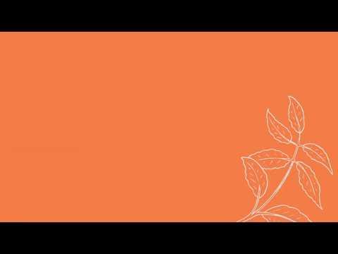 areej  international womens day 2020